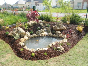 Créations de bassins de jardin